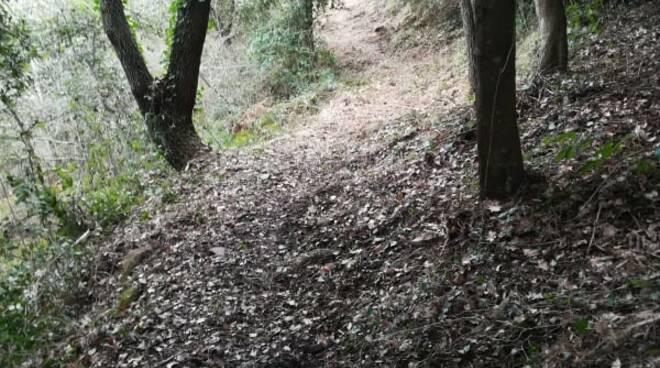 Pulizia dei sentieri di Perinaldo