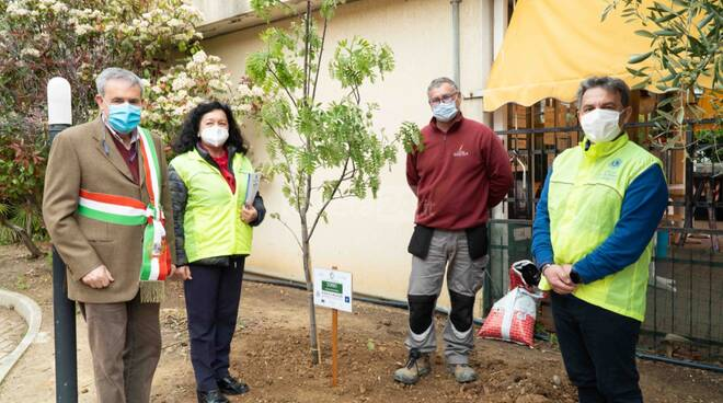 Linea Green Lions Club piantare alberi