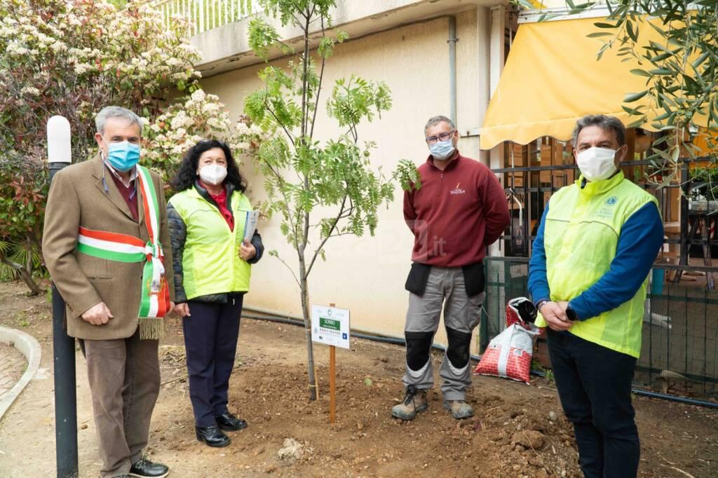 Linea Green Lions Club piantare alberi