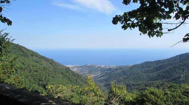 Riviera24- festival dei boschi