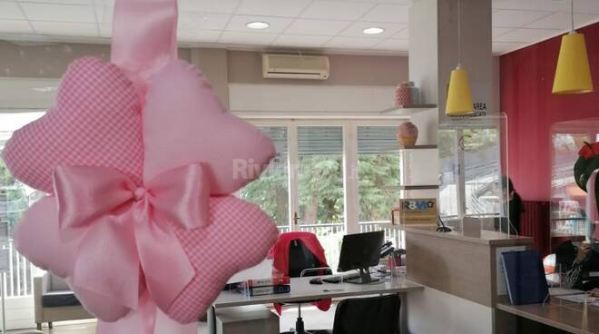 fiocco rosa alla sant'anna
