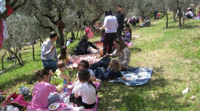 riviera24 - merende nell'oliveta