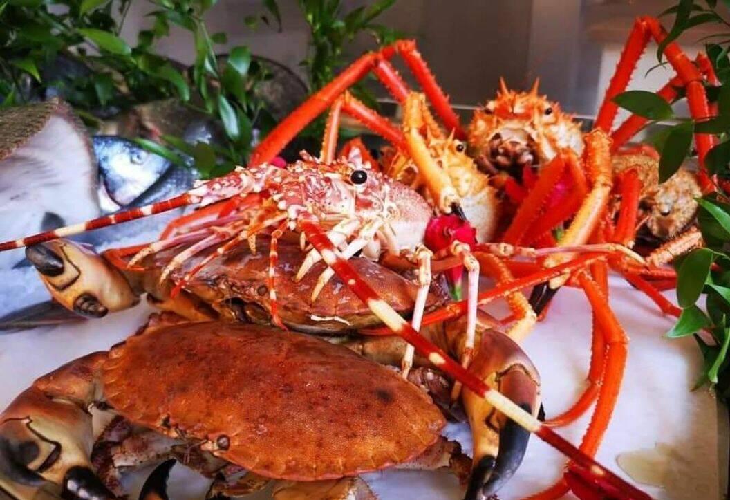 Riviera24- flipper ristorante