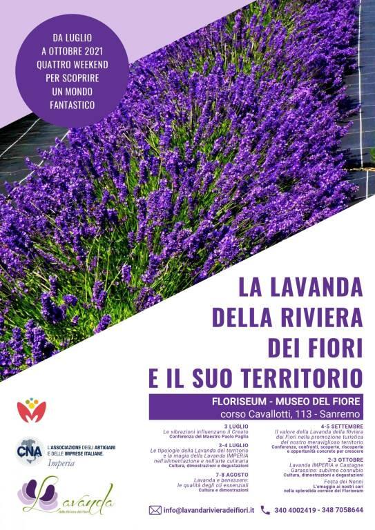 riviera24 - lavanda
