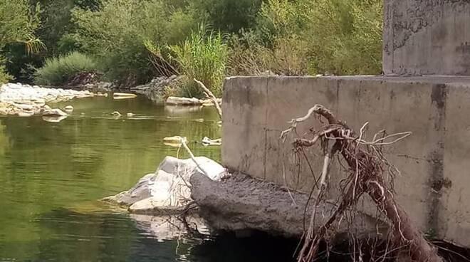 ponte calvo fondamenta