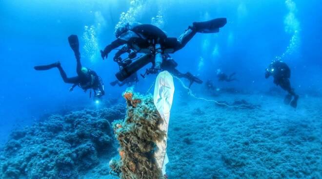 riviera24 - secca santo stefano mare immersioni subaquei