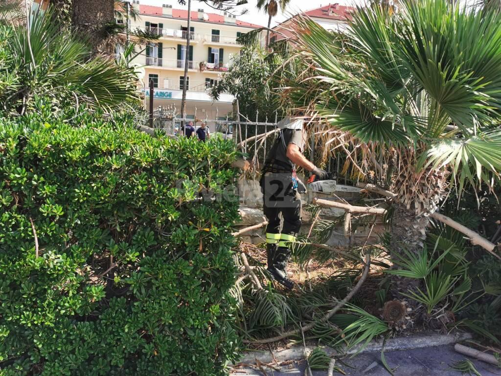 Riviera24- Rami pericolanti in stazione a Bordighera