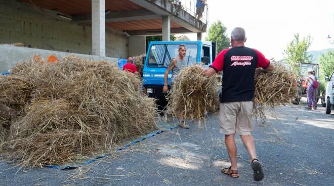 riviera24 - Si torna a trebbiare il grano a Ciabaudo